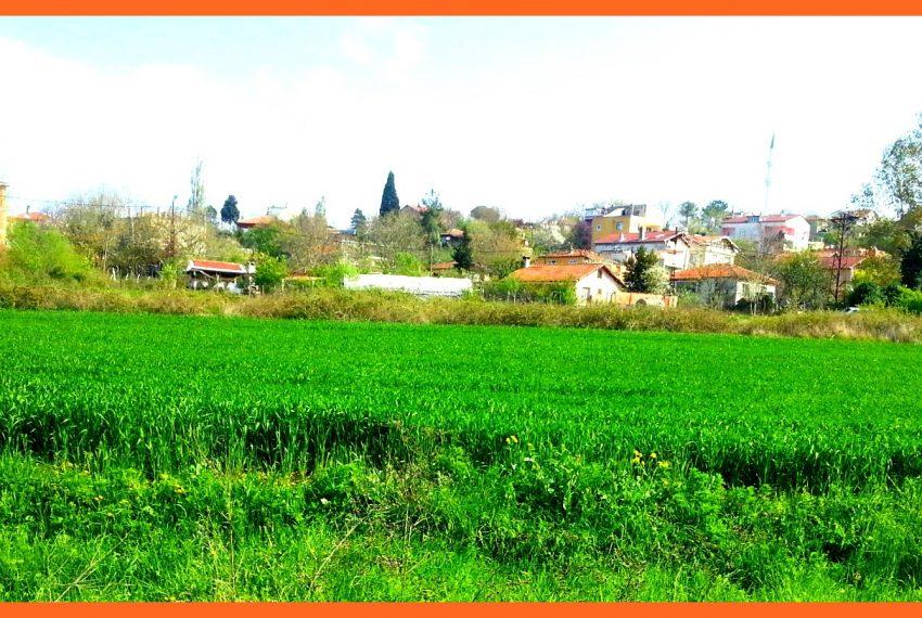 Yeniköy 2201